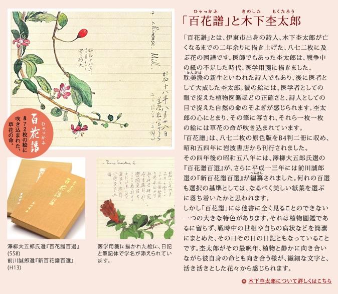 20171004石舟庵2