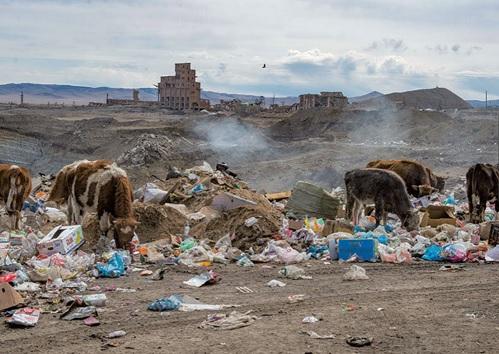 20190209モンゴルの牧畜
