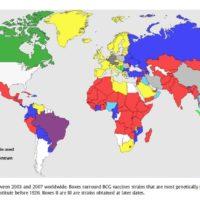 20200331新型コロナウイルスとBCG (2020/03/28) の記事画像